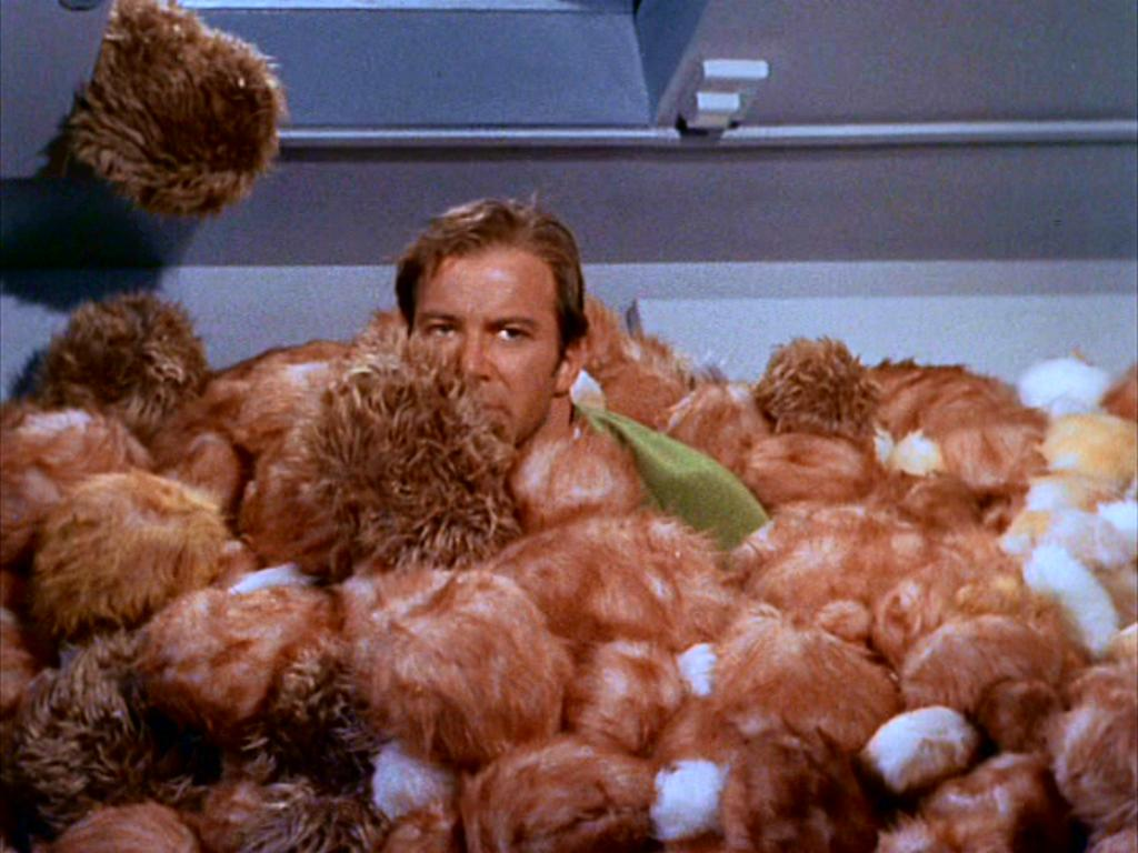 tribbles star trek